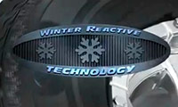 Winter Reactive Technology